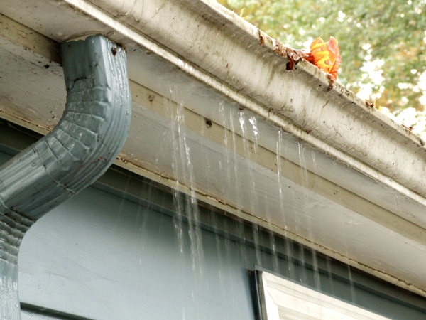 Common Signs of Blocked Gutters